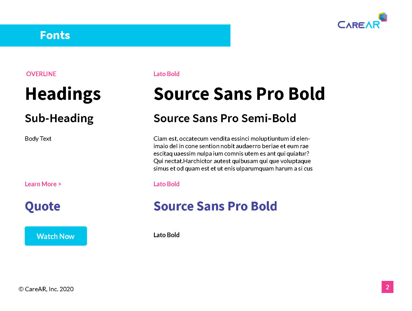 CareAR Style Guide Sample Page